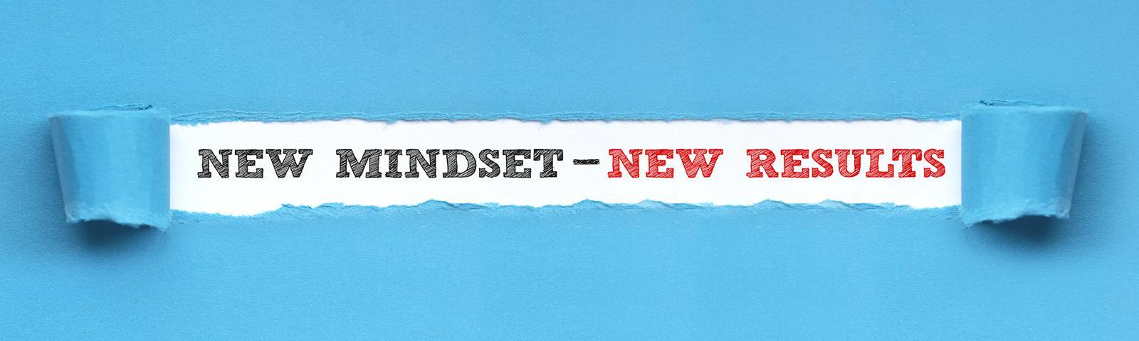 Mindset: Myth and Business Reality