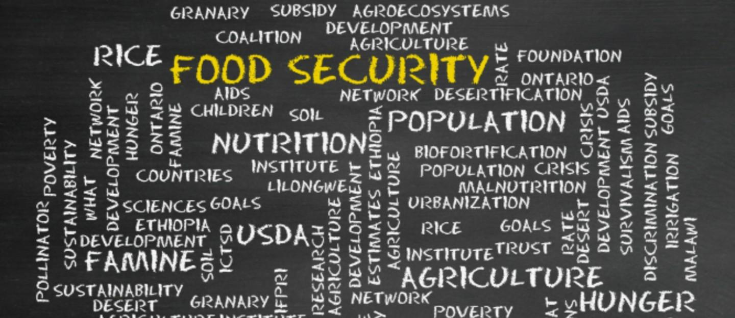 Food Security and Covid-19 Pandemic